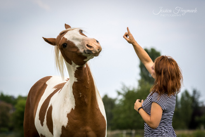 Jack Pferd laechelt