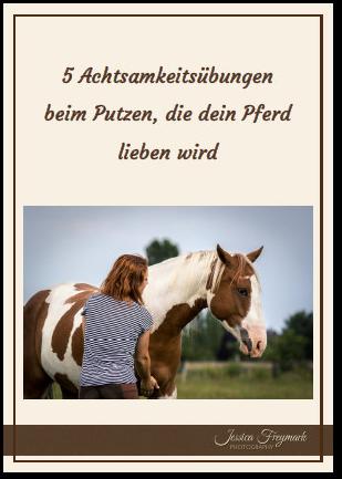 5 Achtsamkeitsübungen beim Putzen, die dein Pferd lieben wird