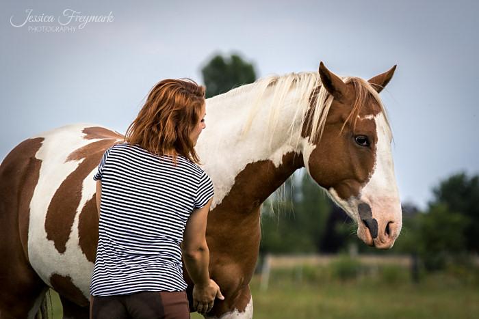 Achtsamkeit im Umgang mit dem Pferd