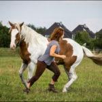 Fotografische Begleitung für dich und dein Pferd