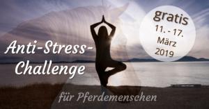 Kostenlose Anti-Stress-Challenge für Pferdemenschen vom 11. bis 17. März 2019