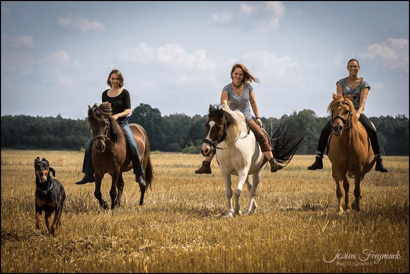 3 Freundinnen, 3 Ponys und 1 Hund