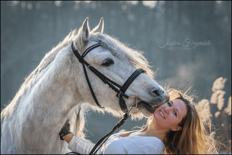 Jenny und Duque - Ein Pferdekuss bei Minusgraden