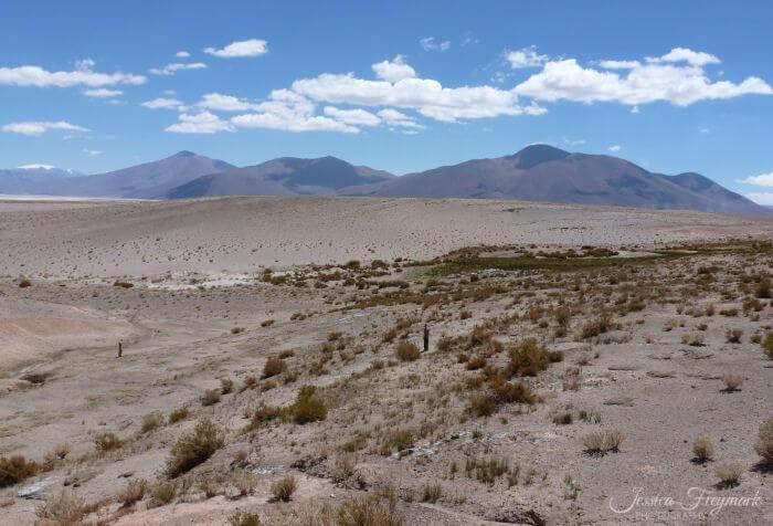 2 Menschen in der Weite des Puna Plateaus und 3 Vulkane im Hintergrund