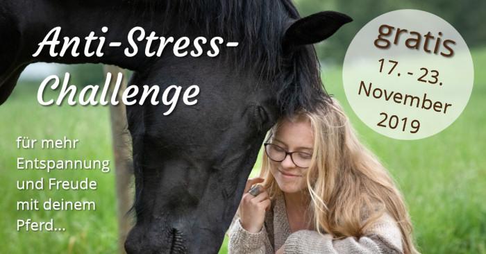 Kostenlose Anti-Stress-Challenge für Pferdemenschen vom 17. bis 23. November 2019