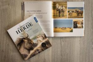 Buch Im Kreis der Herde