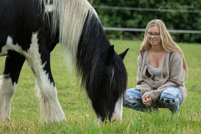 Mensch beobachtet Pferd