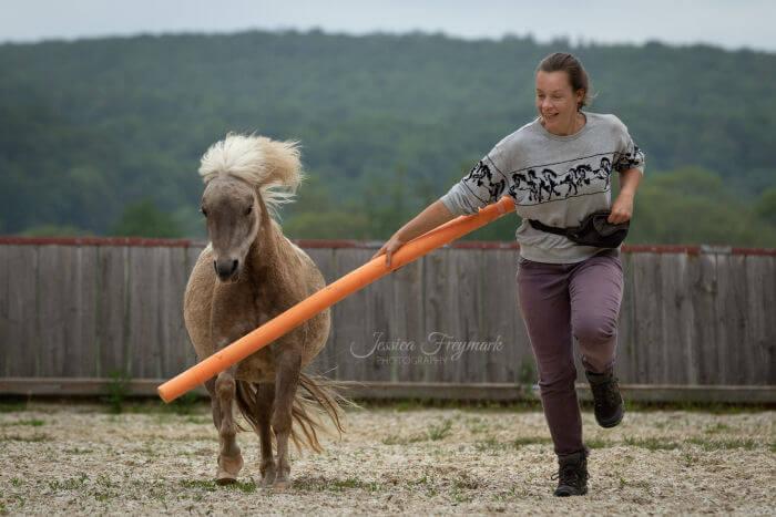 Mensch und Pferd galoppieren gemeinsam - Intrinzen