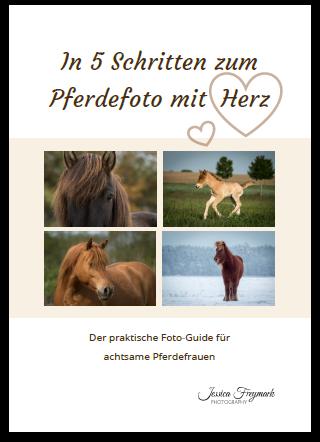 In 5 Schritten zum Pferdefoto mit Herz - Der praktische Foto-Guide für achtsame Pferdefrauen
