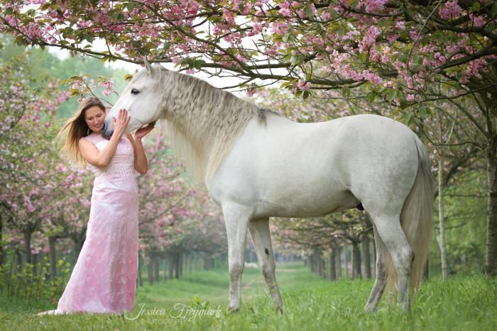 Hier rahmen die Äste oben und der Baum rechts das Bild ein. Der Blick führt immer wieder zum Pferdekopf und zum Frauengesicht.