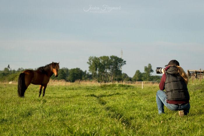 Mensch hockt und fotografiert Pferd