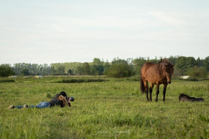 Fotograf liegt