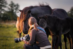Jessica Freymark mit Pferden