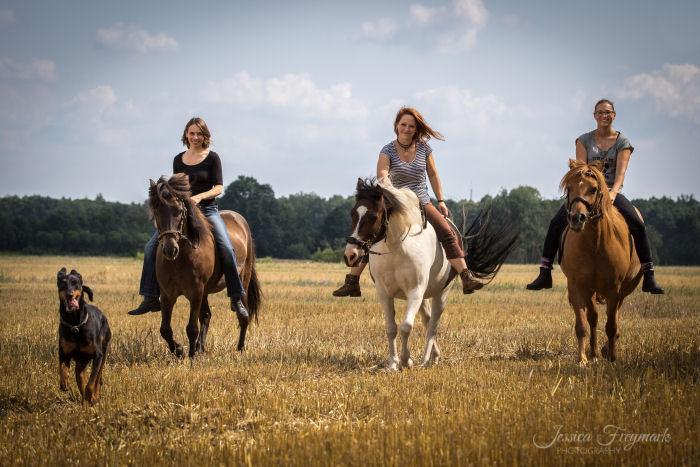 3 Frauen auf ihren Pferden