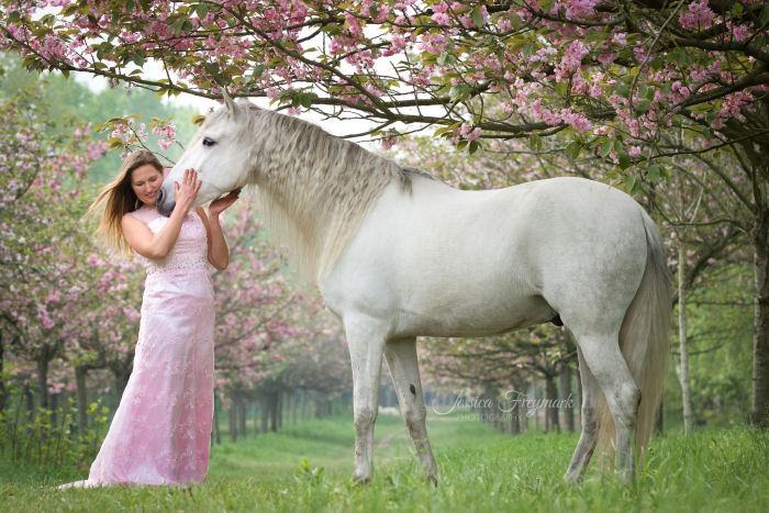 Frau im rosa Kleid mit weißem Pferd