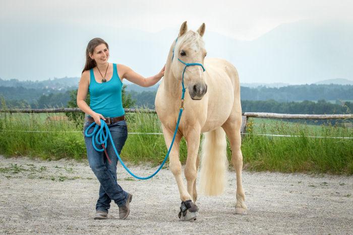 Pferd und Mensch in einheitlichem Farblook