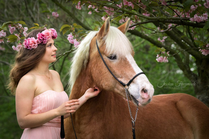 Fuchs und rosafarbenes Kleid