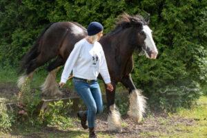 Weißes Oberteil und Jeans mit schwarzem Pferd