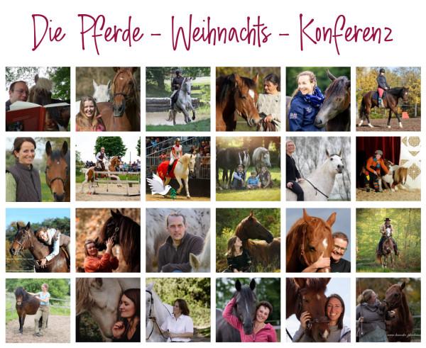 Pferde-Weihnachtskonferenz_klein