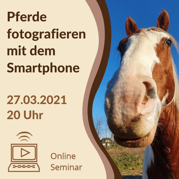 Grafik-Onlineseminar_Smartphone2021_Quadratisch