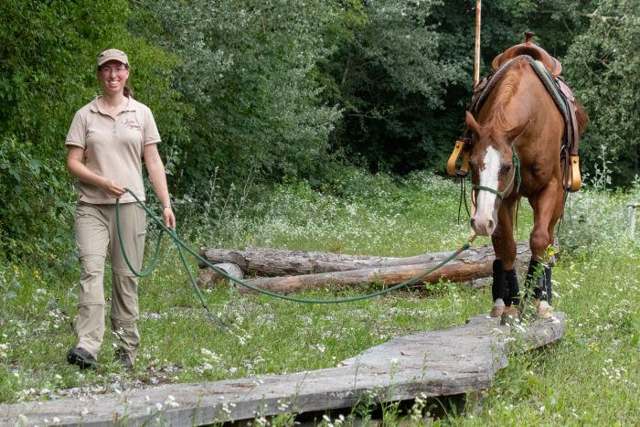 Jessica Freymark mit Leihpferd am Laufsteg