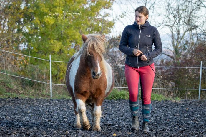 Pferd und Mensch im Gleichschritt