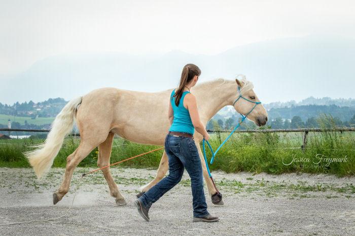 Pferd und Mensch im Gleichtakt
