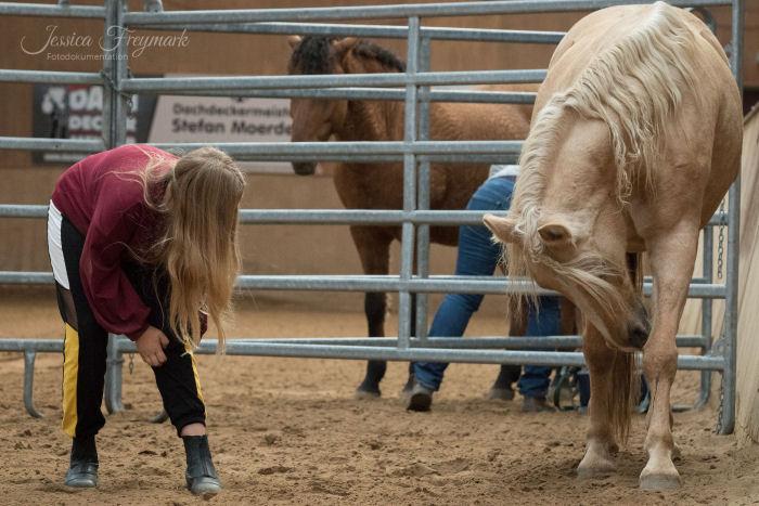 Mädchen spiegelt ihr Pferd