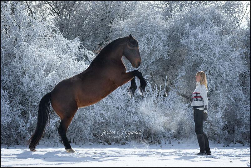 Katja Schnabel im Schnee