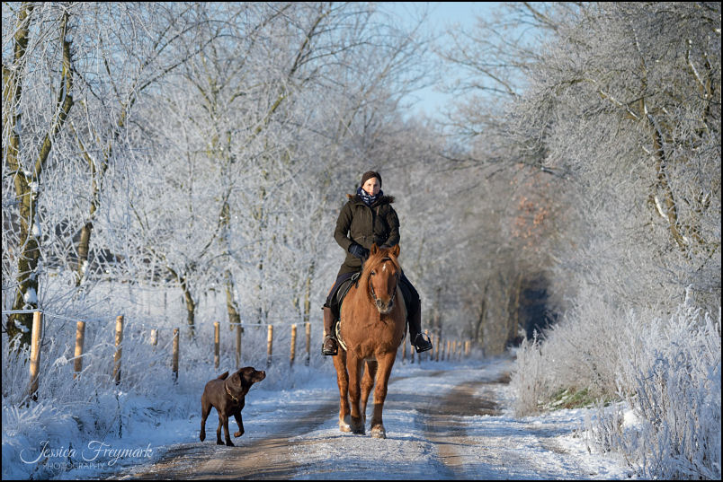 Diana und Toffifee im Schnee
