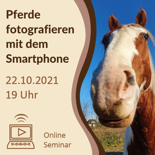 Grafik-Onlineseminar_Smartphone2021b_Quadratisch