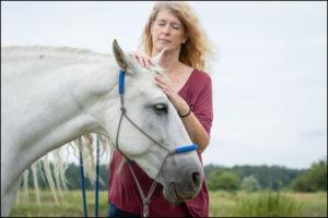 Energiearbeit am Pferd